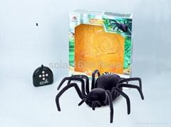 4CH R/C spider
