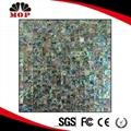 Seamless Mexico Abalone Shell Mosaic