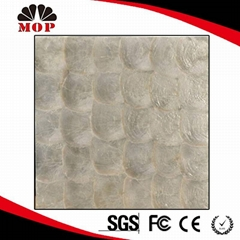 White Capiz Shell Mosaic Silver Mosaic Tile