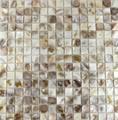 Colorful shell mosaic tile