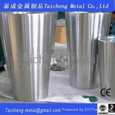 Staibnless steel flowerpot