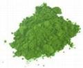 Wheat Grass Extract Juice Powder Organic 8:1 15:1  1