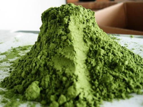 Wheat Grass Extract Juice Powder Organic 8:1 15:1  2