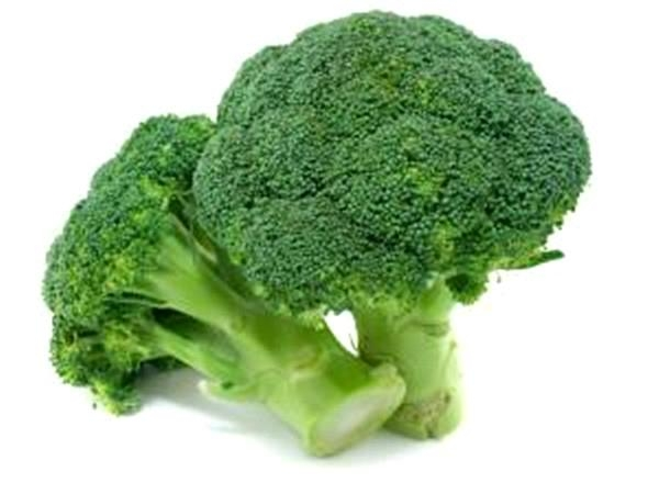 Pure Broccoli Powder Without Artificial Additives Bulk Sale  3