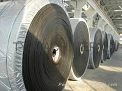 Polyester(EP) Conveyor Belts
