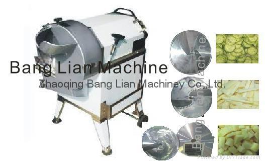 Bulb(Root) Vegetable Cutting Machine 1
