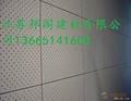 石膏硅酸钙穿孔吸音板 3