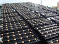 广州品牌叉车蓄电池