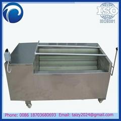 China supplier ginger washing and peeling machine