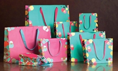 Paper Carrier Bags Gift Bags Shopping Bags