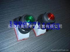 8018D防爆带灯按钮