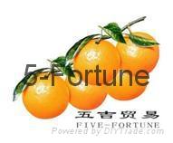 NingbBo Five-Fortune Trade CO., LTD.
