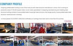 laizhou dingrong trading co.,ltd