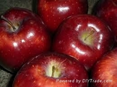 Gala Apples , Red Delicious, Fresh Apples