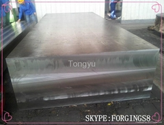 forged flat hot mould steel