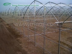 High Modern Multispan Agricultural Plastic Greenhouse