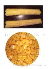 天发玉米脱粒机 2