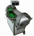 Muti-Functional Vegetable Cutting Machine