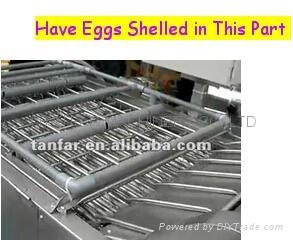 天发自动熟鸡蛋脱壳机 3