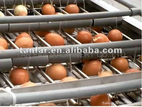 天发自动熟鸡蛋脱壳机 5