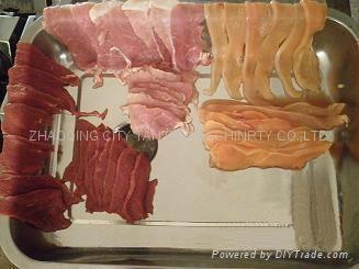 天发小型座台式切肉机 4