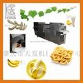 TANFAR Banana Peeling Machine