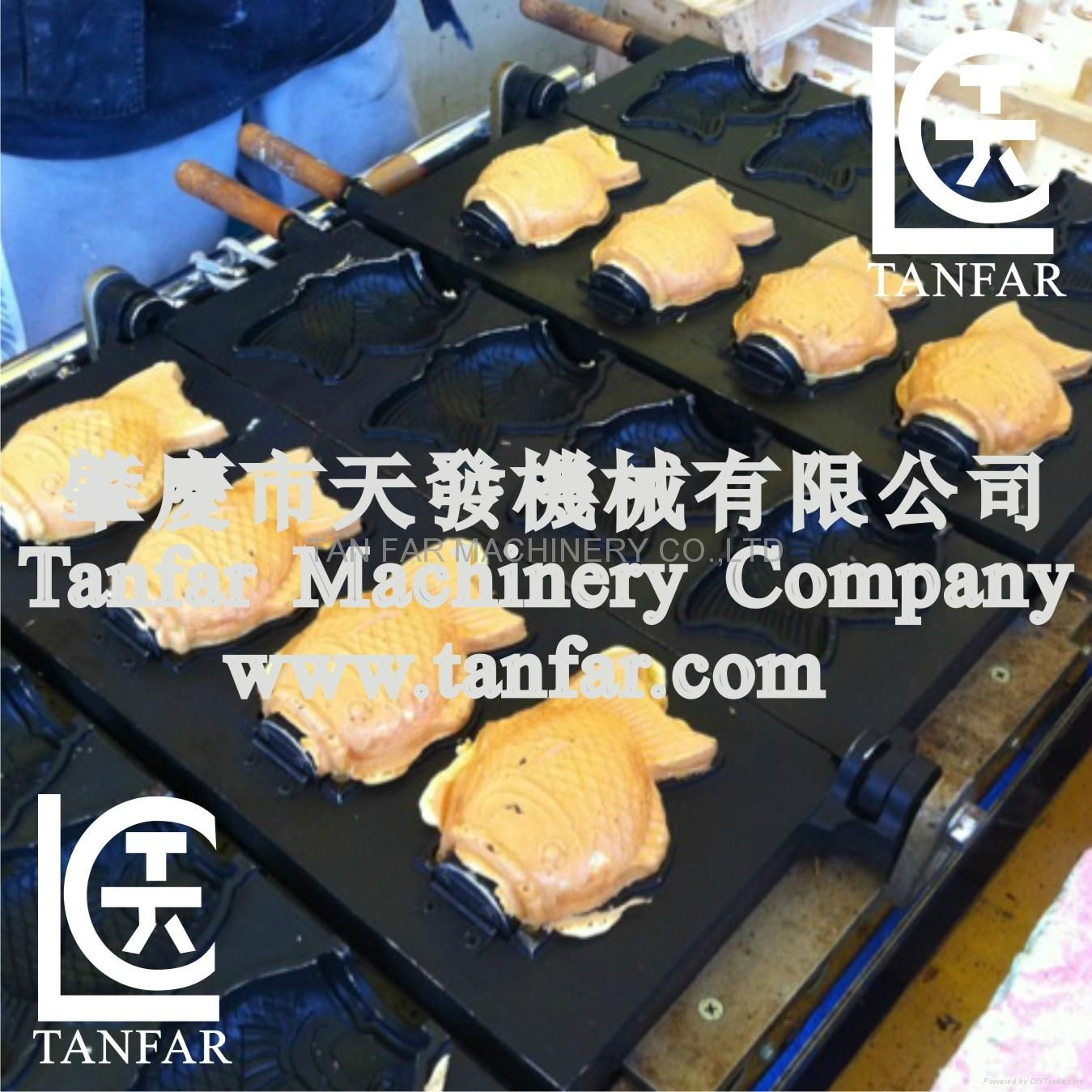 TANFAR hot sale eggette making machine for sale 5
