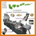 TANFAR Automatic Wonton noodles & Noodle