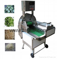 Vegetables and Fruits Processing machine
