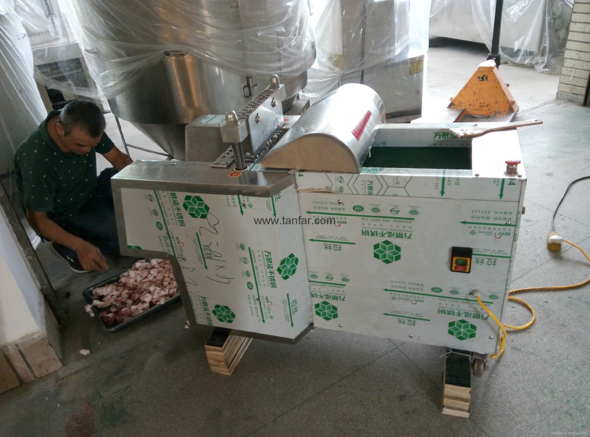 天發電動水果切絲機切粒機粉碎機切片機 15