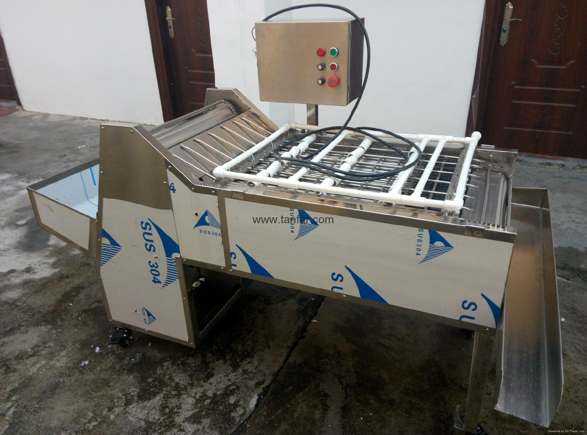Egg washing machine TF-22/28 8