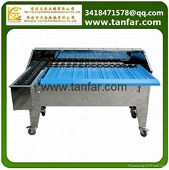 Simple Egg Weight Grading Machines/Egg Grader TF-40