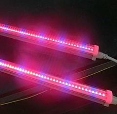 LED植物组培灯T5灯管