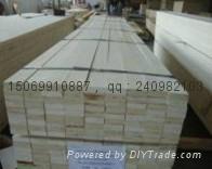 杨木LVL单板层积材 5