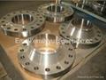 "EN10292 10"" *CL300lb Forged Carbon Steel A105 WN Flange 3"