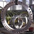 "EN10292 10"" *CL300lb Forged Carbon Steel A105 WN Flange 4"