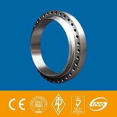 "EN10292 10"" *CL300lb Forged Carbon Steel A105 WN Flange"