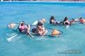 Hot sales canoa policarbonato  molokini