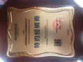 成都KSTAR科士達UPS電源YDC9310 2