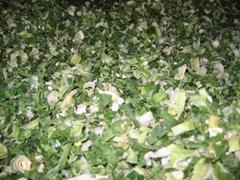 Dried Green Onion