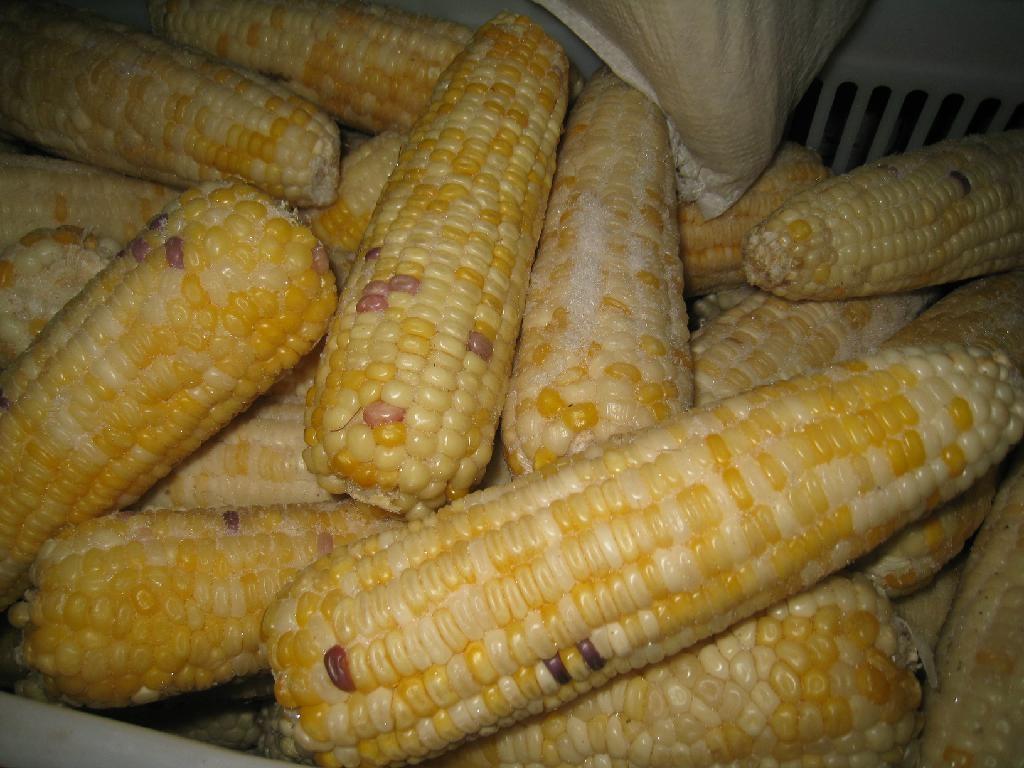 速冻甜玉米粒 1