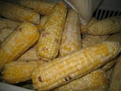 速凍甜玉米粒