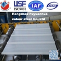 Color Coated Steel Coils PPGI for Roofing Building Supply any RAL Color 4