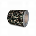 hot rolled steel  galvanized steel coil color coated ppgi ppgl gi gl 2