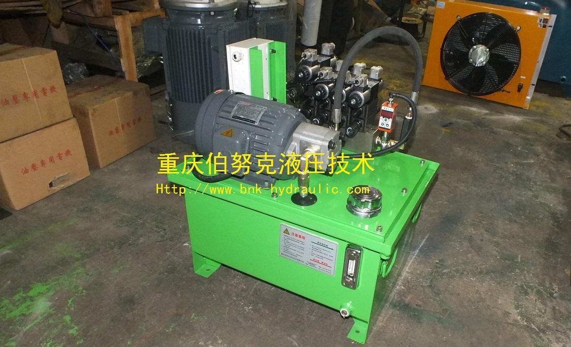 意大利ATOS柱塞泵齿轮泵 1