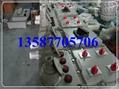 防爆檢修插座箱 2