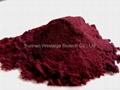 haematococcus pluvialis powder 3.0%