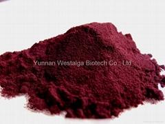 haematococcus pluvialis powder 3.0% (Uncracked)