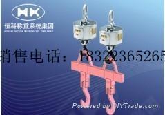 天津OCS-XZ-GGE-pro电子吊钩秤