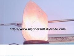 以上50公斤鹽岩模型